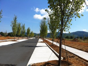 North View of new Sidewalks along Lendon Main